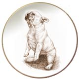 Laurelwood Plates French Bulldog