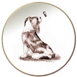 Laurelwood Dog Plate Cavalier King Charles Spaniel
