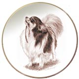 Laurelwood Plate Chihuahua Long Coat 2013