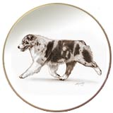 Australian Shepherd Laurelwood Dog Plate