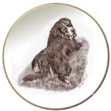 Laurelwood Dog Plate Bernese Mountain Dog