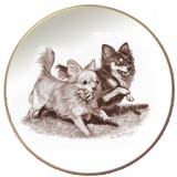 Laurelwood Dog Plate Chihuahua