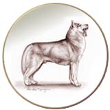 Siberian Husky Laurelwood Dog Plate